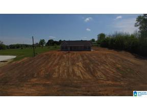 Property for sale at 183 Fowler Springs Road, Blountsville, Alabama 35031