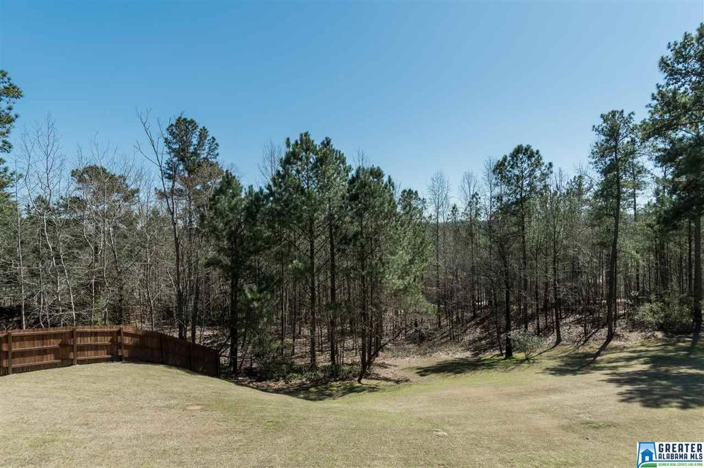 Photo of home for sale at 212 Wild Timber Pkwy, Pelham AL