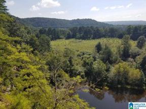 Property for sale at 760 Highway 57, Blountsville, Alabama 35031