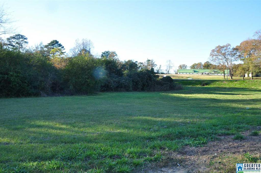 Photo of home for sale at 0 Smokey Rd, Alabaster AL