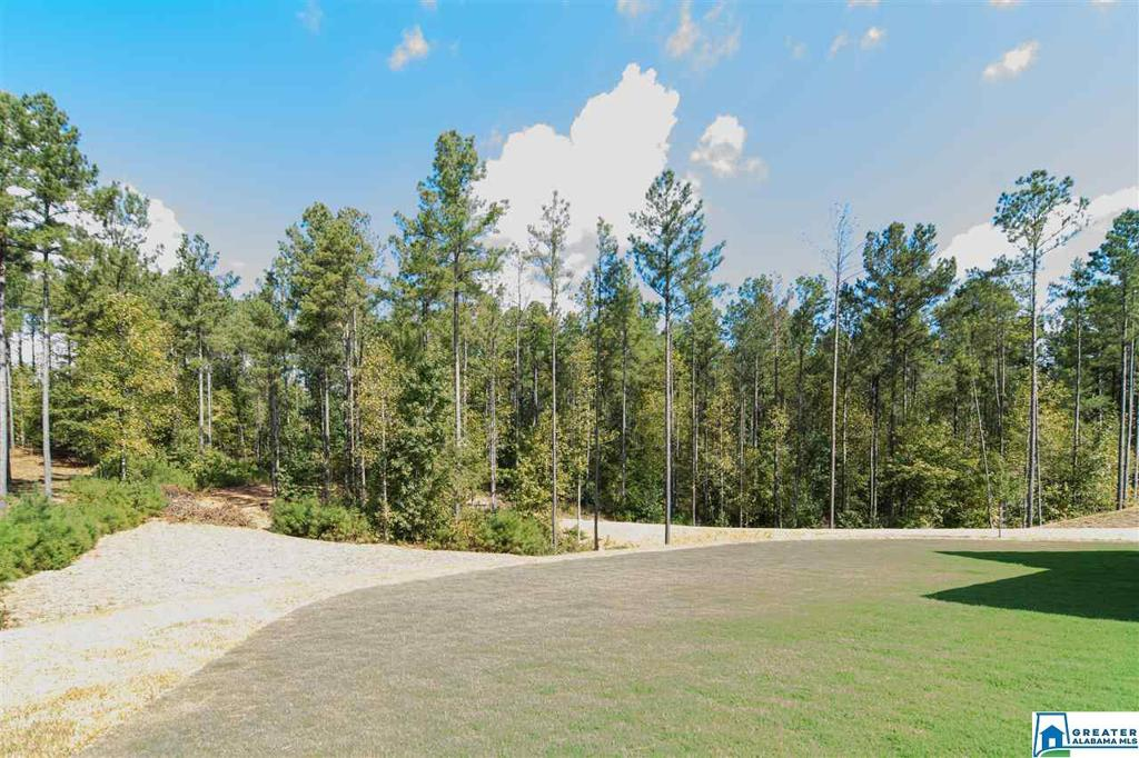 Photo of home for sale at 2136 Hwy 336, Chelsea AL