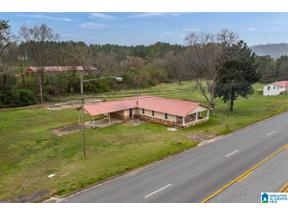 Property for sale at 405 6th Street S, Oneonta, Alabama 35121