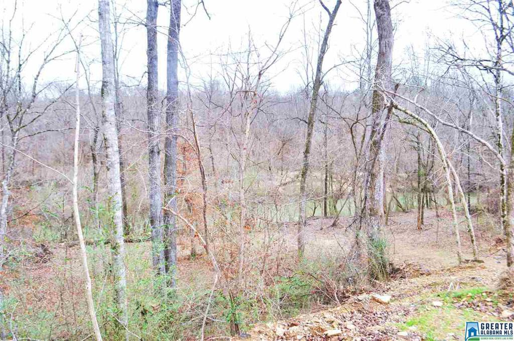 Photo of home for sale at 622 Riverwoods Landing, Helena AL