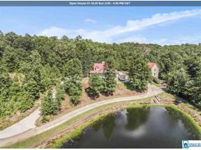 Property for sale at 6280 Hwy 13, Helena,  Alabama 35080