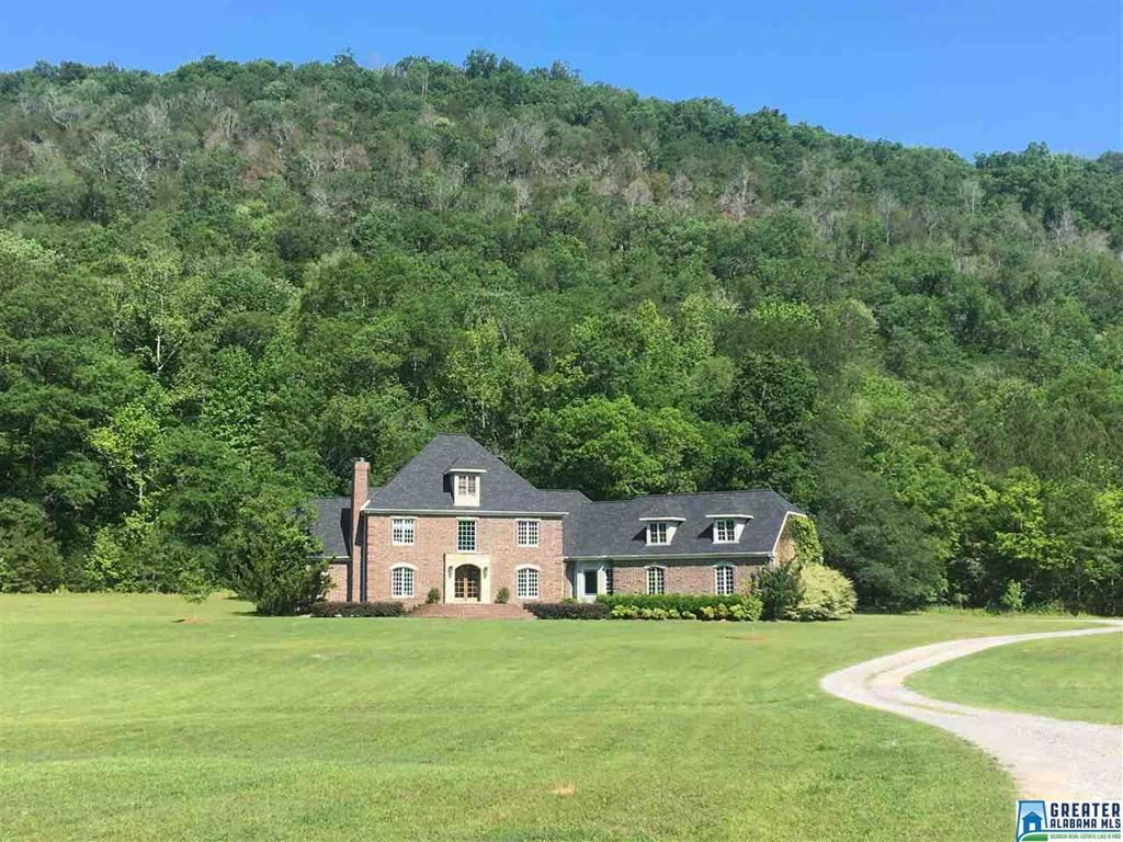 Photo of home for sale at 700 Fred Walker Rd, Oneonta AL