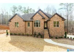 Property for sale at 204 Oaklyn Hills Dr, Chelsea,  Alabama 35043