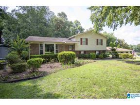 Property for sale at 5329 Nena Circle, Mount Olive, Alabama 35117