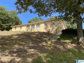 Property for sale at 56230 HWY 231 N Highway 231, Oneonta, Alabama 35121
