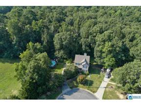 Property for sale at 222 Hunter Hills Cir, Chelsea,  Alabama 35043