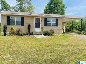 Property for sale at 133 Mcalpine Road, Blountsville, Alabama 35031