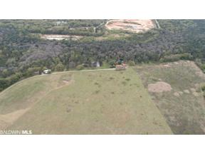Property for sale at 13971 George Younce Rd, Foley,  Alabama 36555