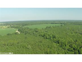 Property for sale at 0 Wilcox Road, Robertsdale,  Alabama 36567