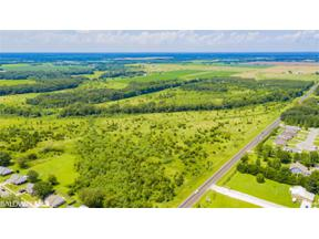 Property for sale at 0 County Road 55, Foley,  Alabama 36535