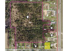 Property for sale at 0 Highway 59, Foley,  Alabama 36535