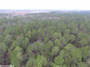 Property for sale at 0 Roscoe Rd, Gulf Shores,  Alabama 36542
