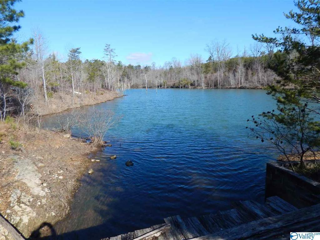 Photo of home for sale at 00 County Road 642, Mentone AL