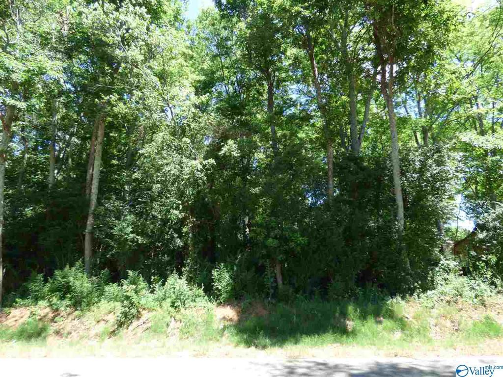 Photo of home for sale at L13 County Road 91, Rogersville AL
