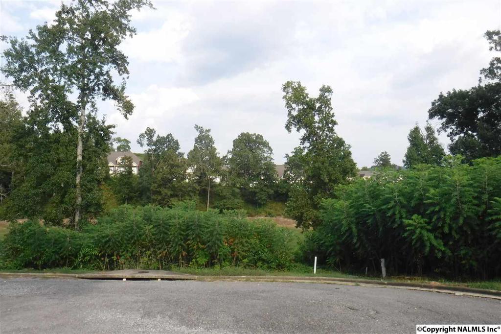 Photo of home for sale at 0 Spy Glass Cove, Guntersville AL
