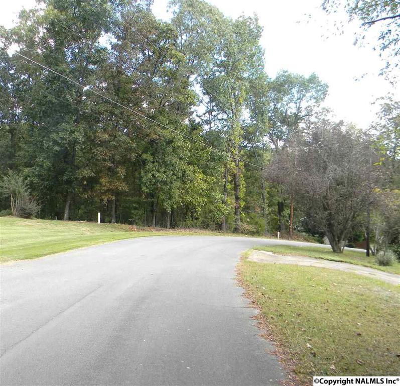 Photo of home for sale at Lenford Avenue, Glencoe AL
