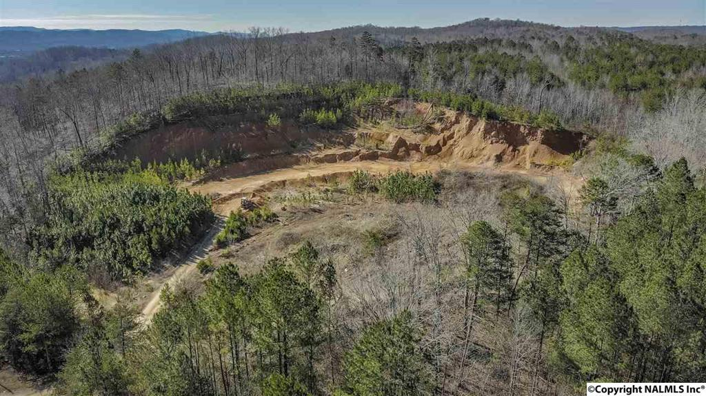 Photo of home for sale at Houston Loop Road, Fort Payne AL