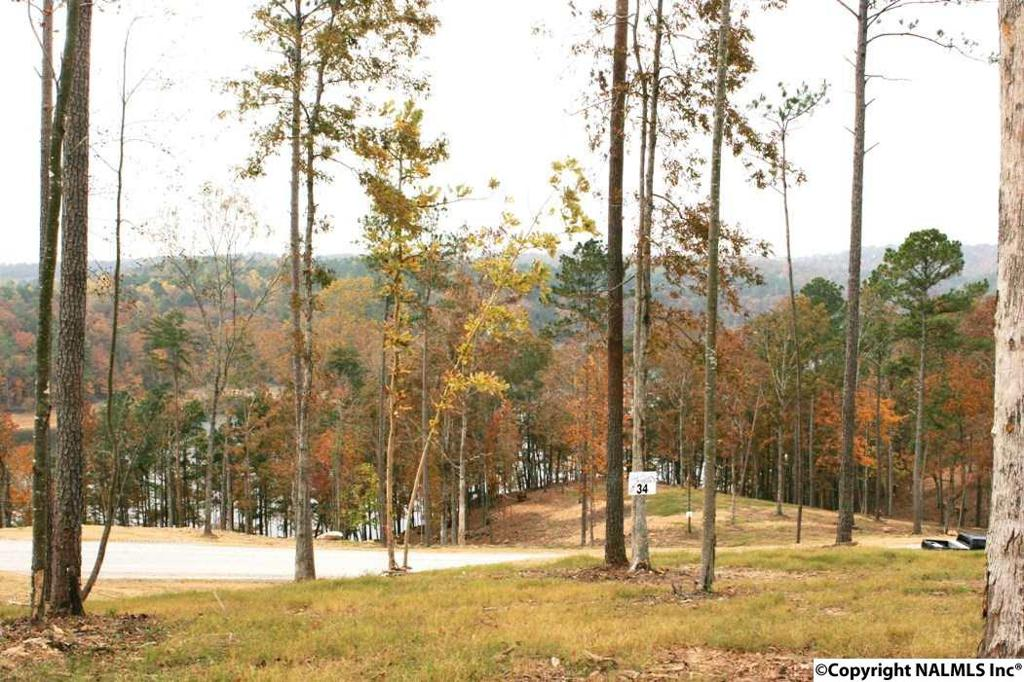 Photo of home for sale at Rock Creek Penninsula, Arley AL