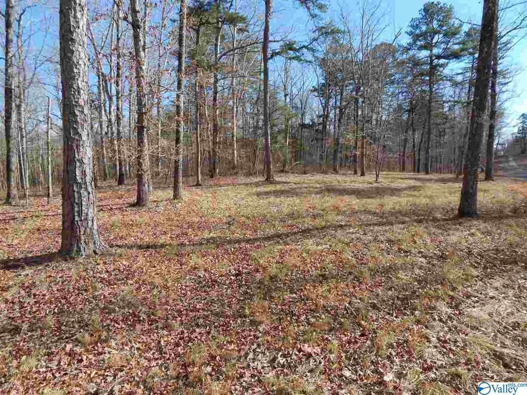 Photo of home for sale at lot 3 Road 935, Mentone AL