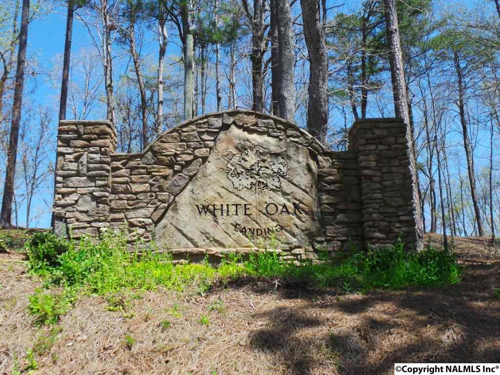 Photo of home for sale at 0 White Oak Road, Arley AL