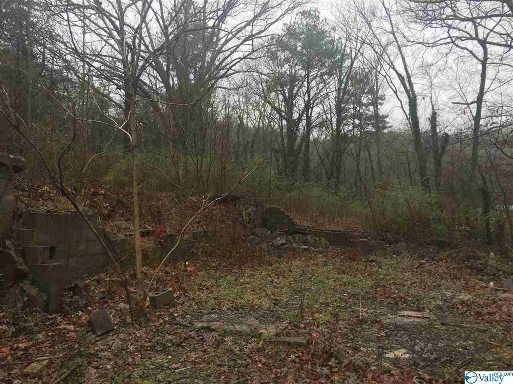 Photo of home for sale at 407 10th Street, Fort Payne AL