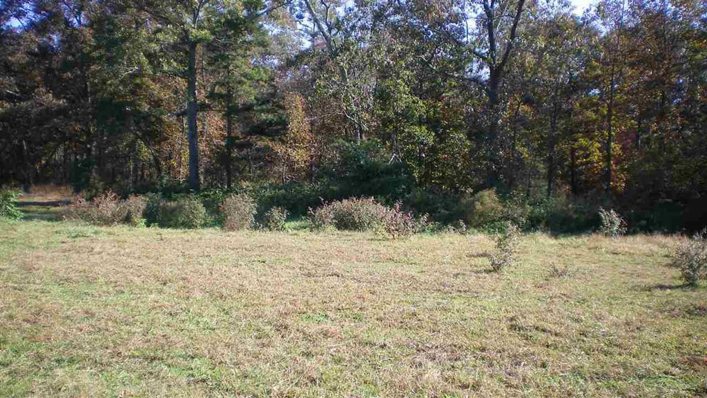 Photo of home for sale at County Road 684, Sylvania AL