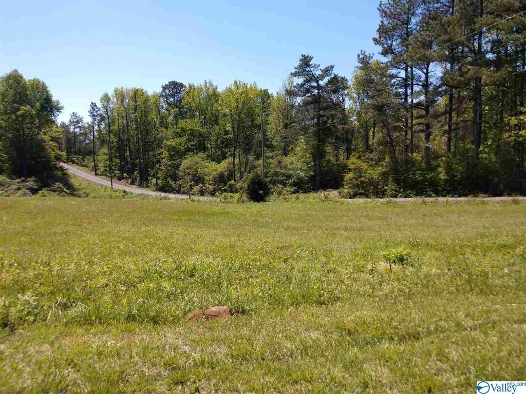 Photo of home for sale at 5452 Wyeth Mountain Road, Guntersville AL