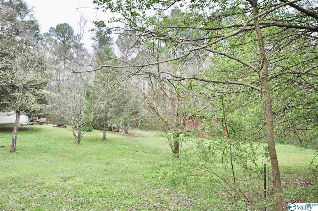 Photo of home for sale at 12422 Us Highway 231, Union Grove AL
