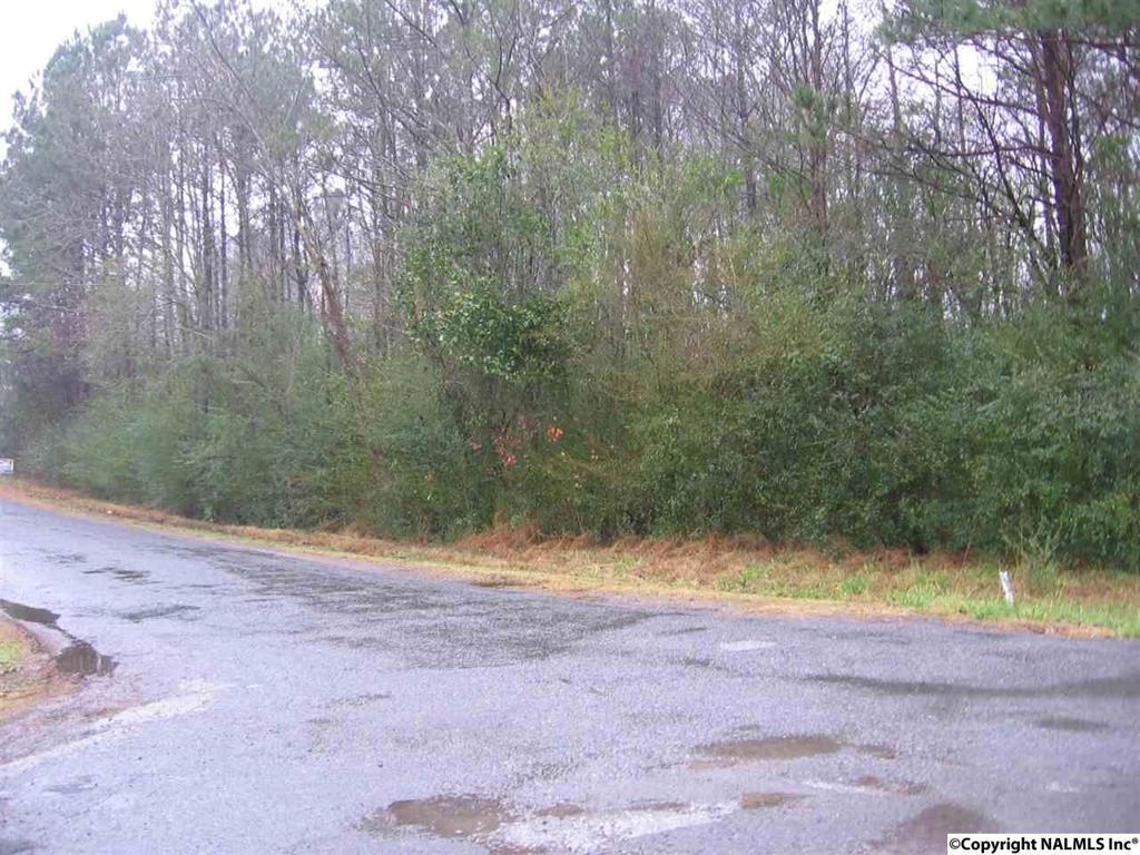 Photo of home for sale at 40 Martin Lane, Guntersville AL