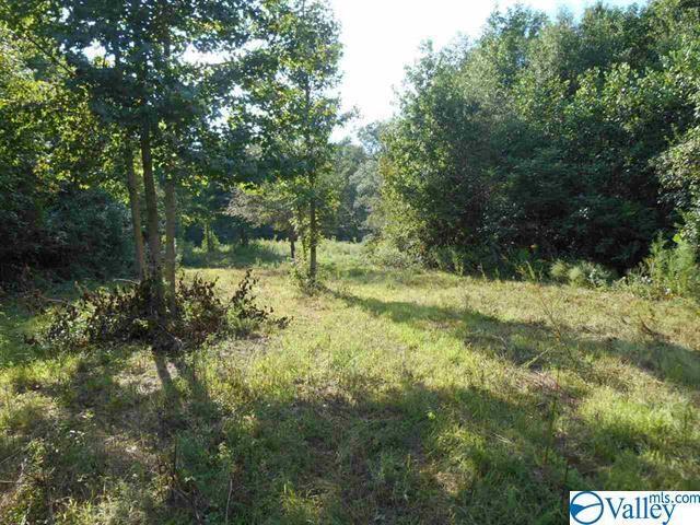 Photo of home for sale at 2451 Solitude Road, Albertville AL