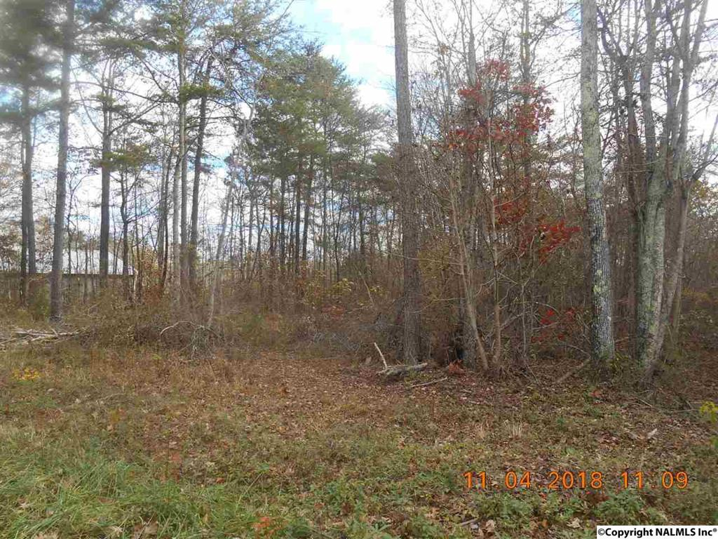 Photo of home for sale at County Road 427, Fort Payne AL