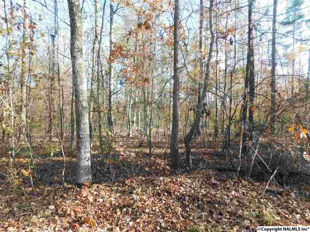 Photo of home for sale at Lot 13 County Road 667, Cedar Bluff AL