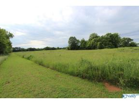 Property for sale at 29899 HARDIMAN ROAD, Madison,  Alabama 35756