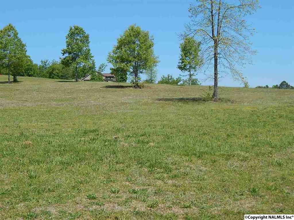 Photo of home for sale at 166 Legendary Drive, Guntersville AL