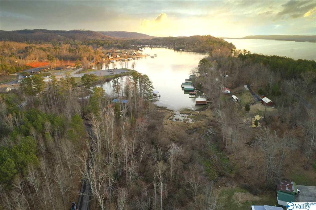 Photo of home for sale at Lot 4 & 5 Pine Island Point, Scottsboro AL