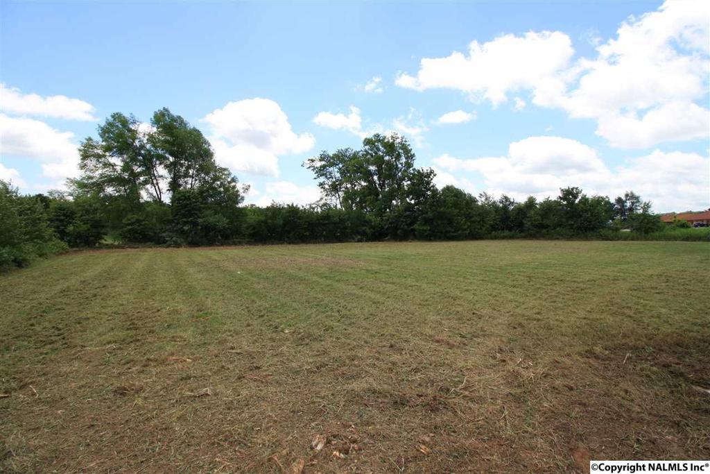 Photo of home for sale at Pulaski Hwy, Cornersville TN
