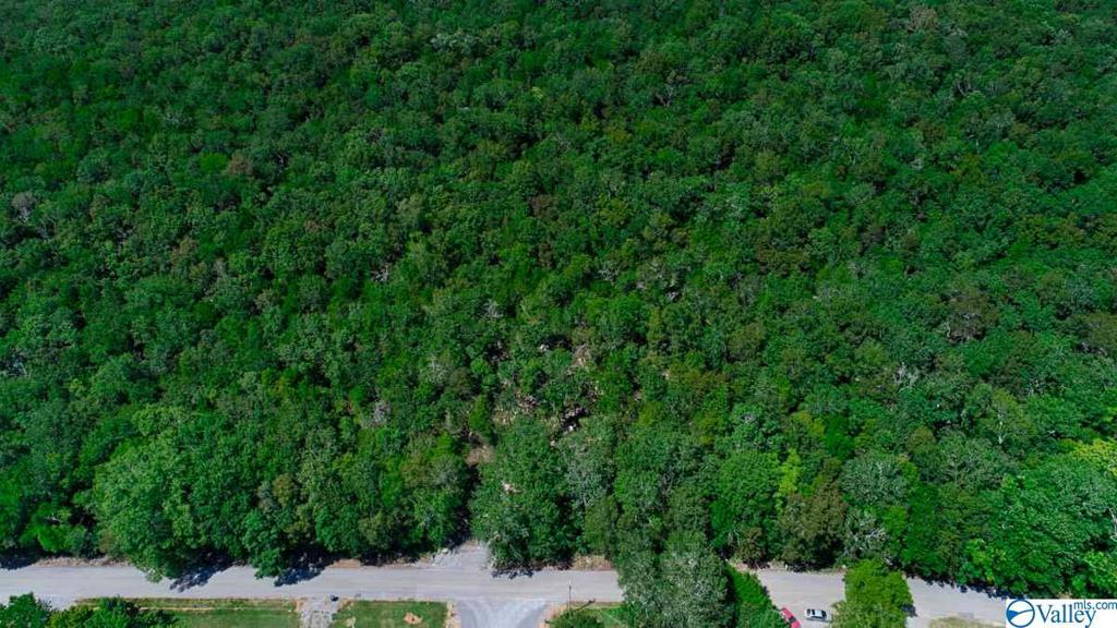 Photo of home for sale at 0 Low Gap Road, Gurley AL
