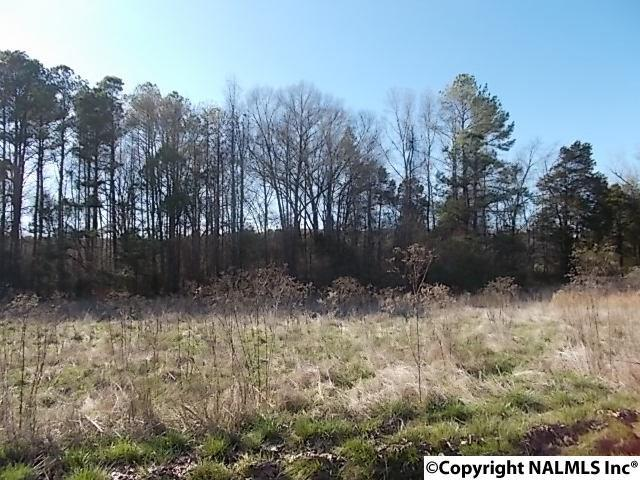 Photo of home for sale at 000 County Road 114, Scottsboro AL