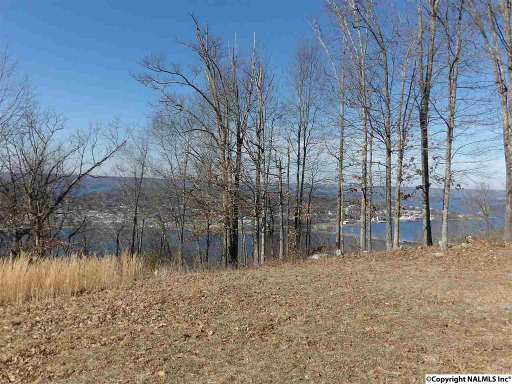 Photo of home for sale at Ridgefield Circle, Guntersville AL