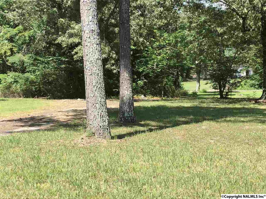 Photo of home for sale at 1311 New York Avenue, Gadsden AL