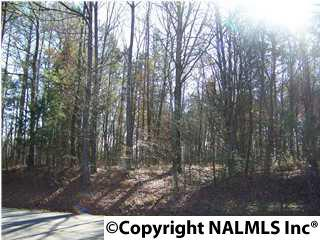 Photo of home for sale at 0 Dan Tibbs Road, Huntsville AL
