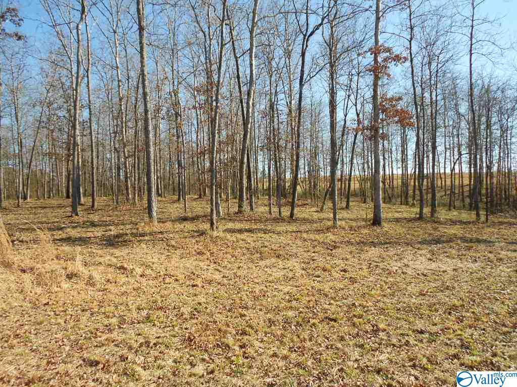 Photo of home for sale at Autumn Lane, Rainsville AL
