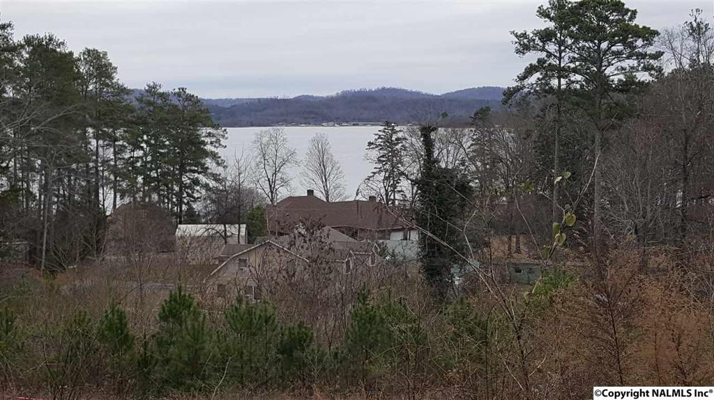 Photo of home for sale at 1 Camp Ney A Ti Road, Guntersville AL