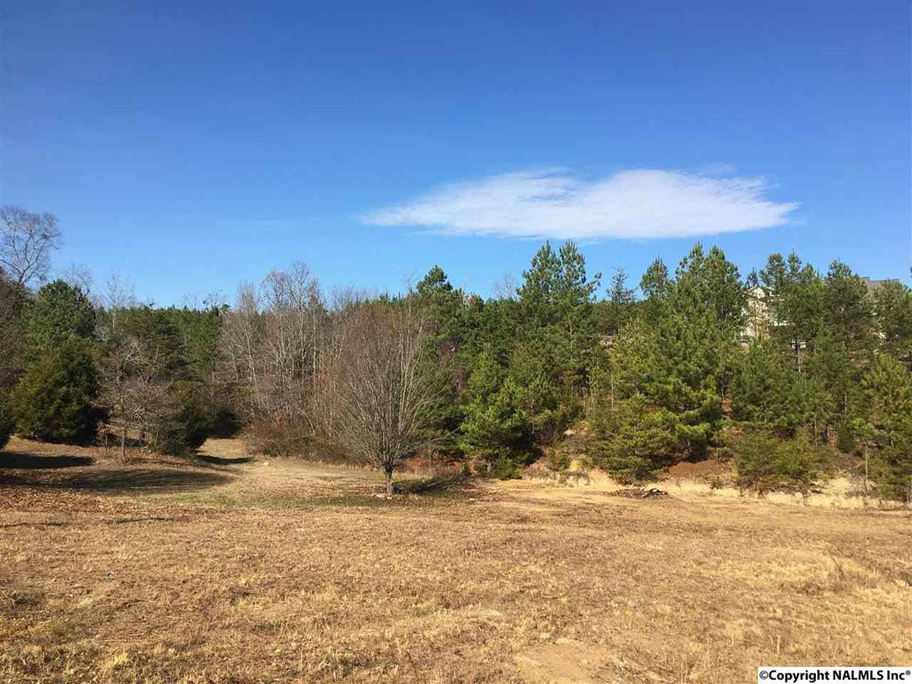 Photo of home for sale at Landon Lane, Fort Payne AL