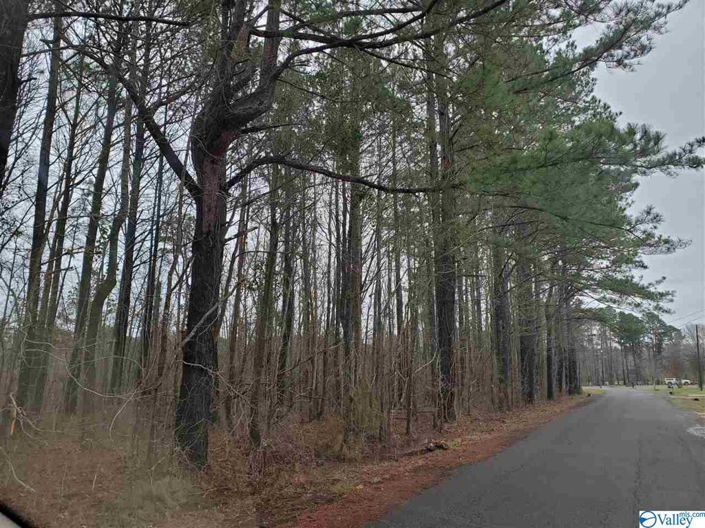 Photo of home for sale at 37-38 Indian Lake Drive, Rainbow City AL