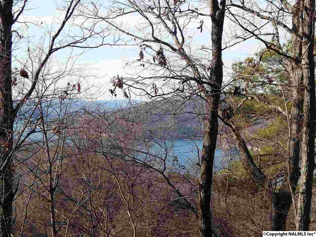 Photo of home for sale at Upper Manchester Road, Guntersville AL