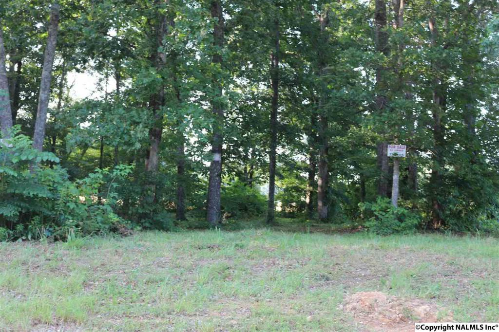 Photo of home for sale at Christie Drive, Toney AL